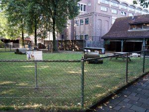 Kinderboerderij met een omheinde dierenweide