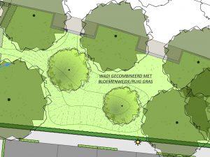 Ontwerp van groen in de wijk gecombineerd met wadi en bloemenweide