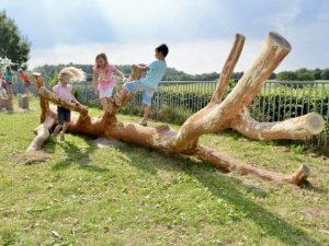 Spelende kinderen op een boomstam