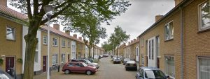 Auto's, bomen en huizen in de Piet van Haarenstraat